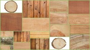 Types of Wood Solid and Engineered